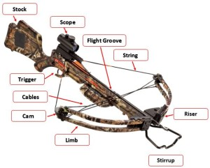 best crossbow reviews and guide - breakdown of a compound crossbow